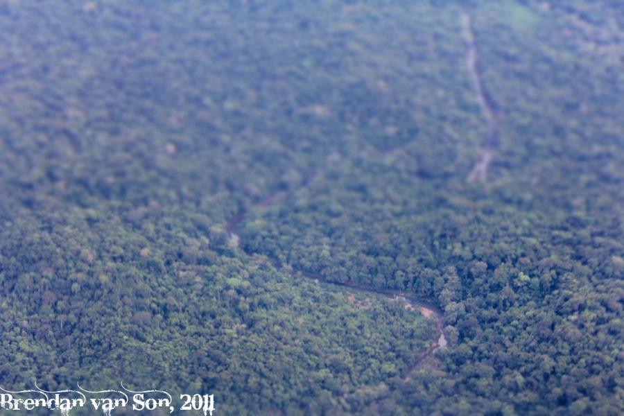 The Darien Jungle