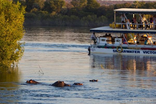 Zambezi River Booze Cruise
