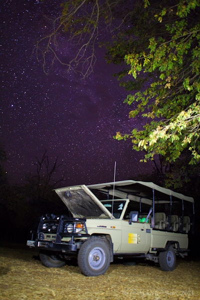 Chobe National Park Stars