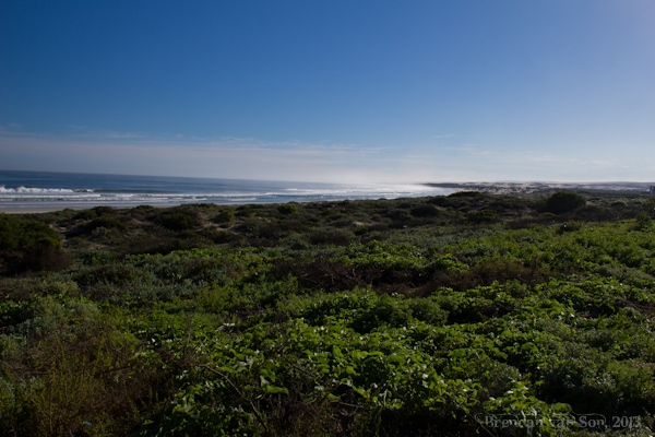 Cape Town, West Coast National Park
