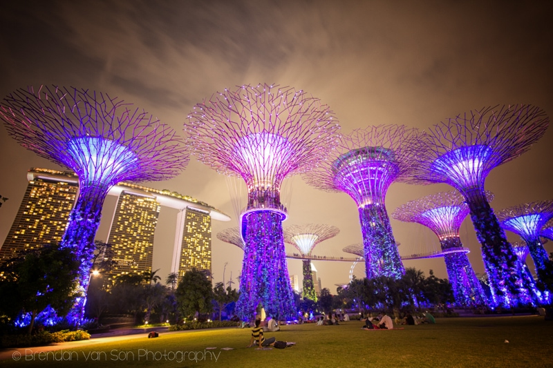 Singapore, Marina Bay Botanical Gardens