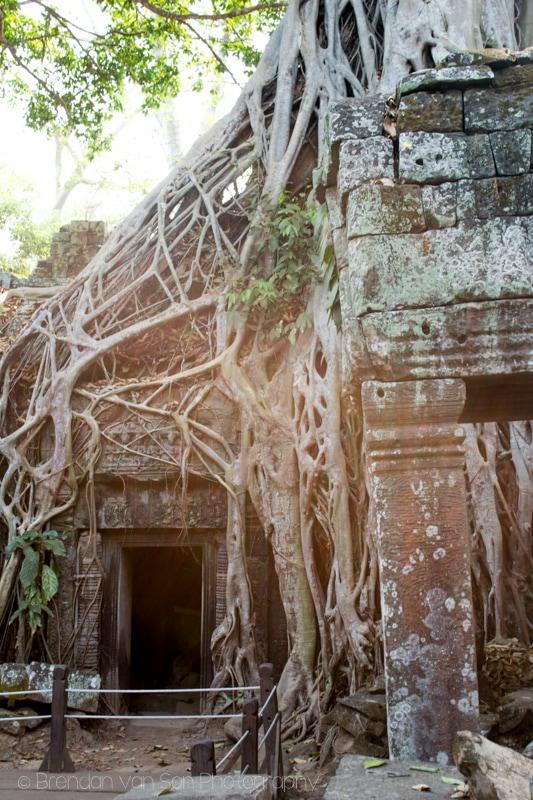 Tomb Raider Temple Angkor Wat