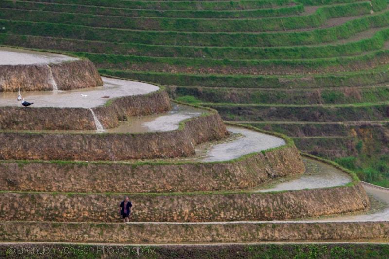 Dragon's Backbone Rice Terraces Longji China