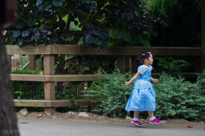 Hong Kong Disneyland princess