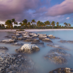 The Florida Keys and The Everglades