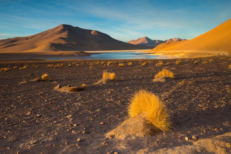 Bolviian Altiplano