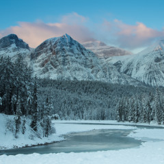 Winter on the Icefields Parkway