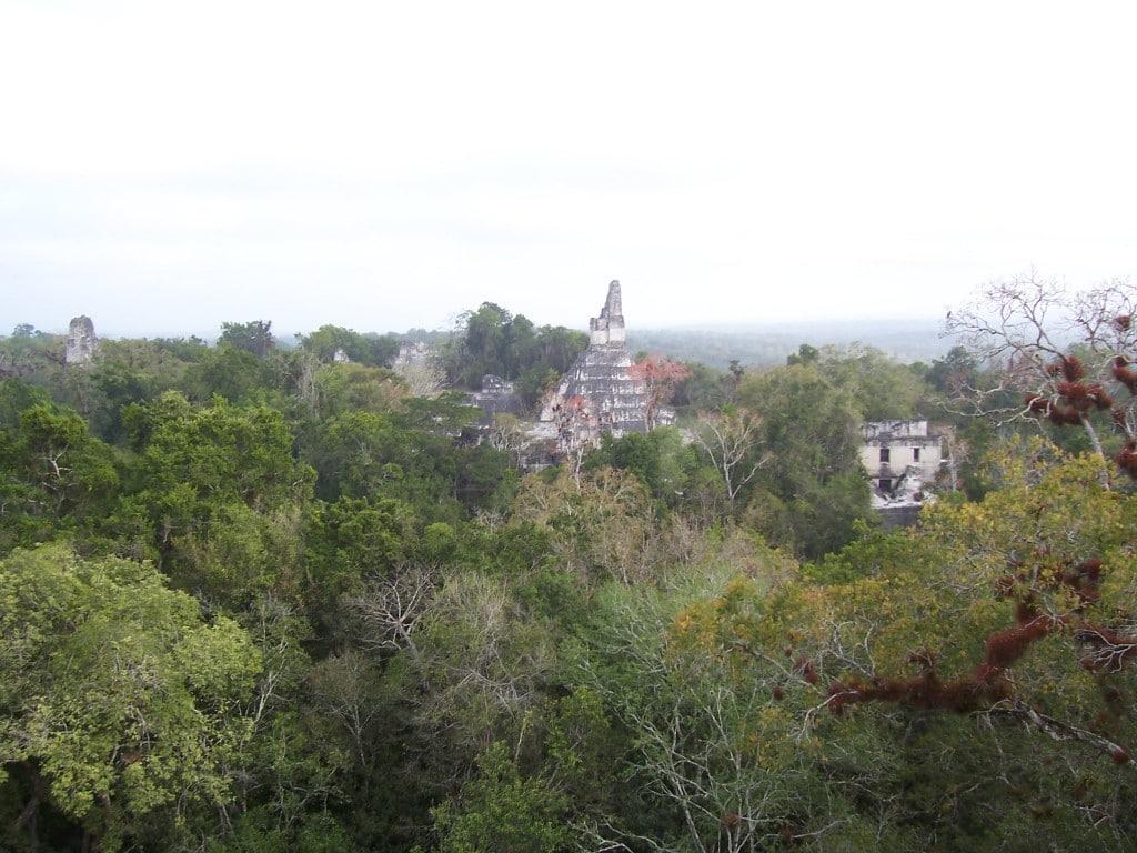 Tikal Ruins, Guatemala, Central America, view, pyramids