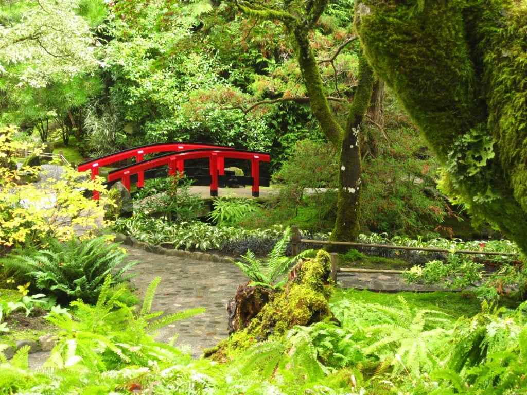 Everytime I walk the Japanese Gardens at Butchart Gardens I feel a little nostalgic urge to go back to Japan.