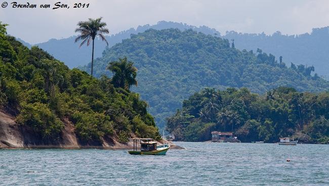 Lush Brazilian coast