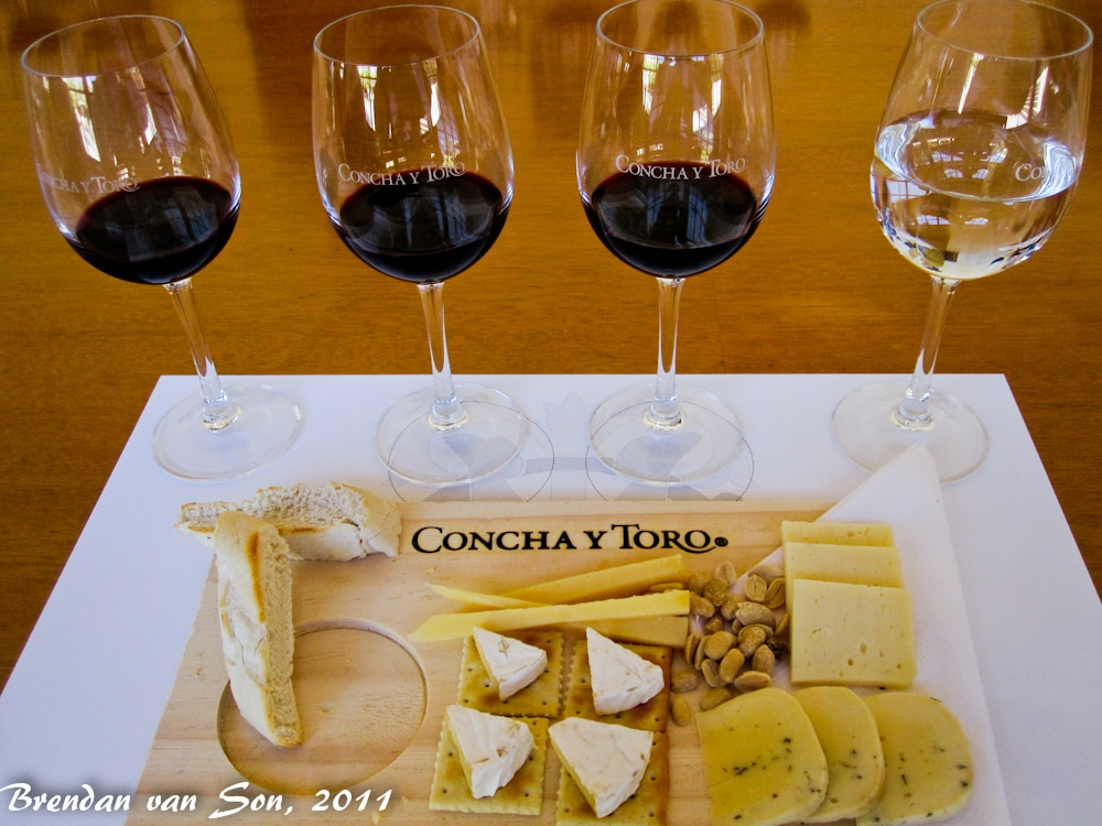 Chile: Concha y Toro Winery