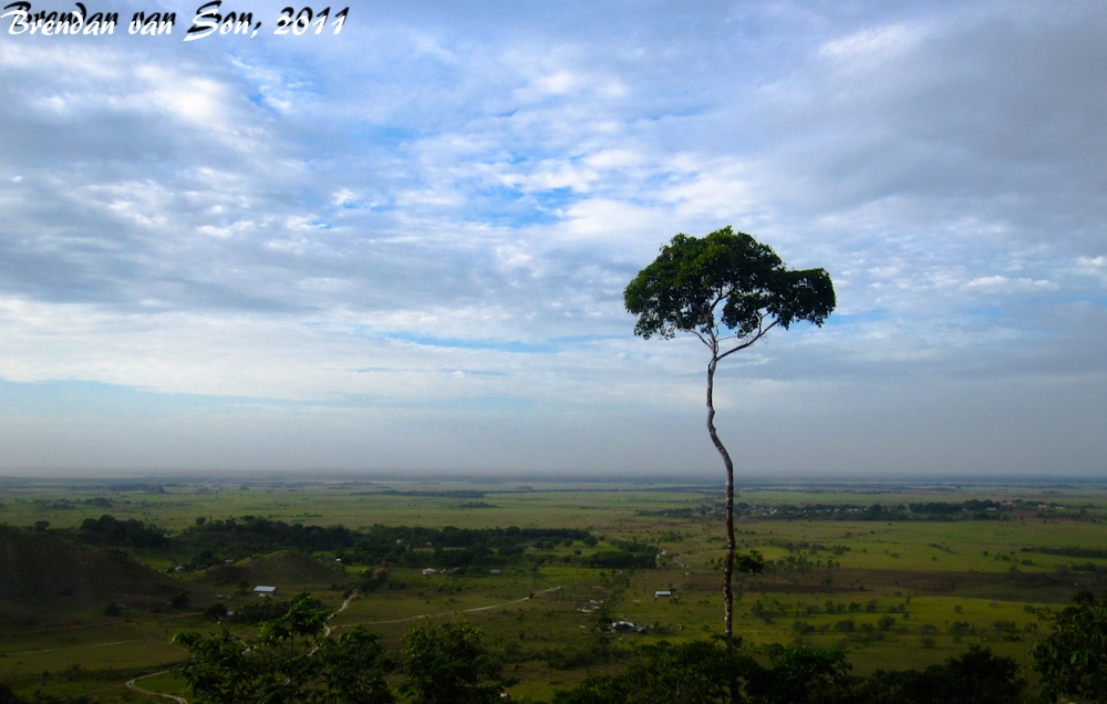 Guyana: The North Rupununi Savannah