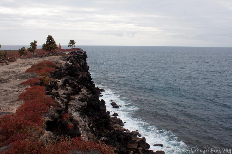Galapagos Coastline