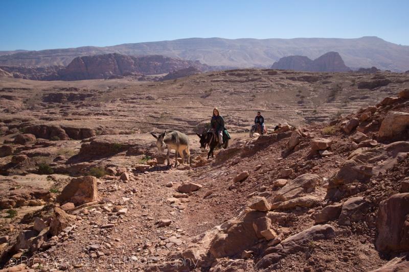 Donkey Trekking, Jordan