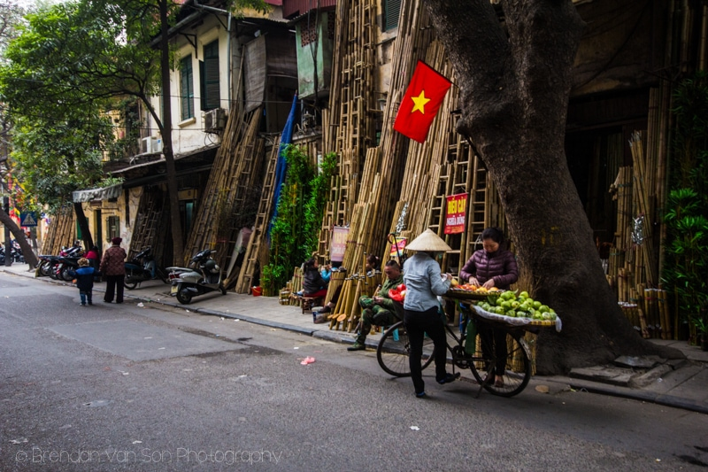 Bamboo for sale, hanoi