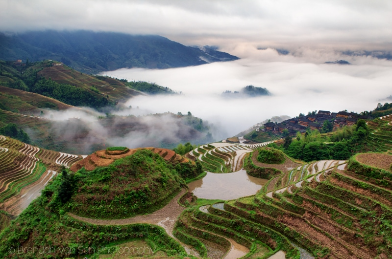 Dragon's Backbone Rice Terraces Longji China