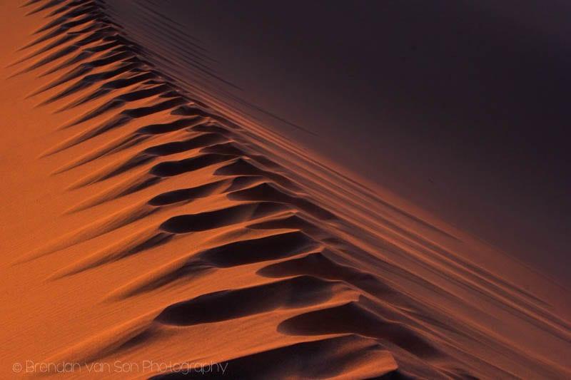 Sand Gobi