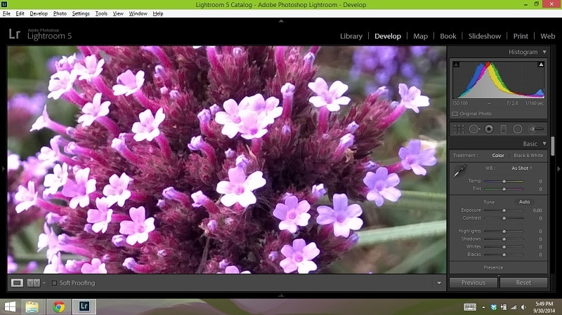 Lumia 1520 Test Shot