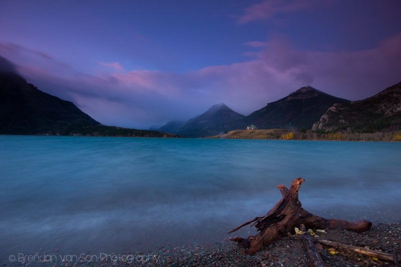 Driftwood, Waterton Lakes National Park