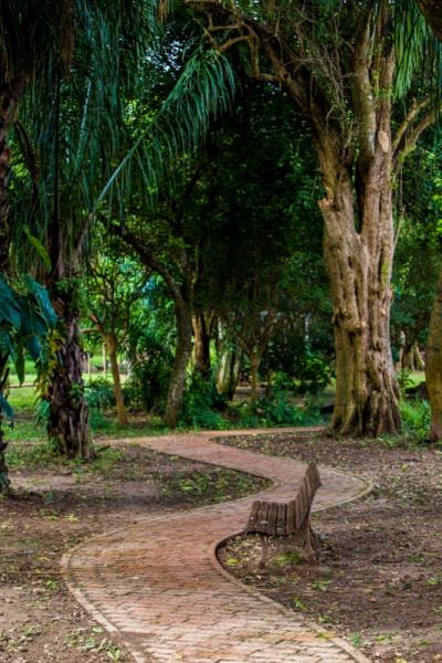 Jardin Botanico, Santa Cruz, Bolivia