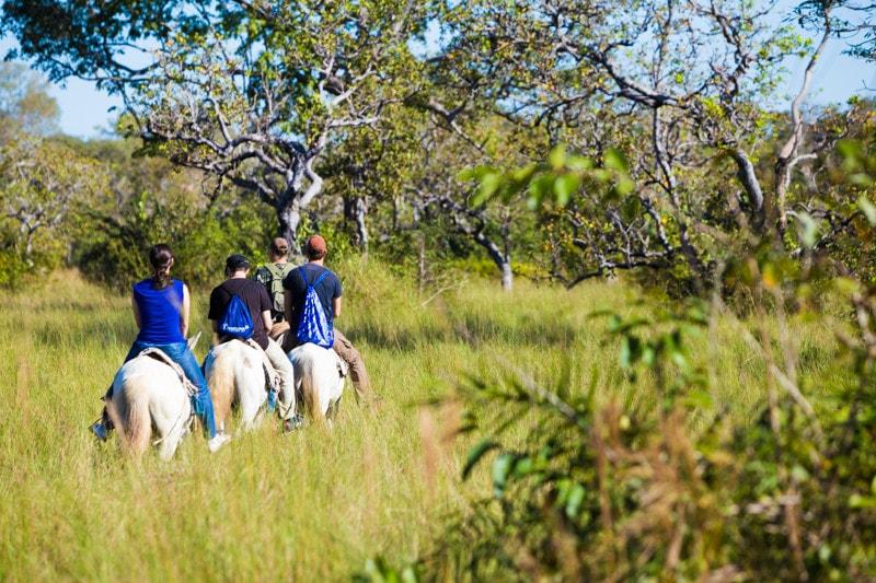 Horseriding, the pantanal