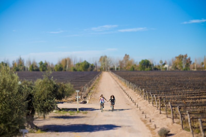 Mendoza bicycle wine tour
