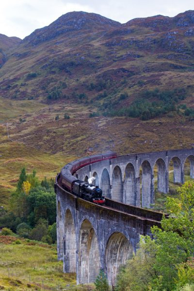 Harry Potter Train