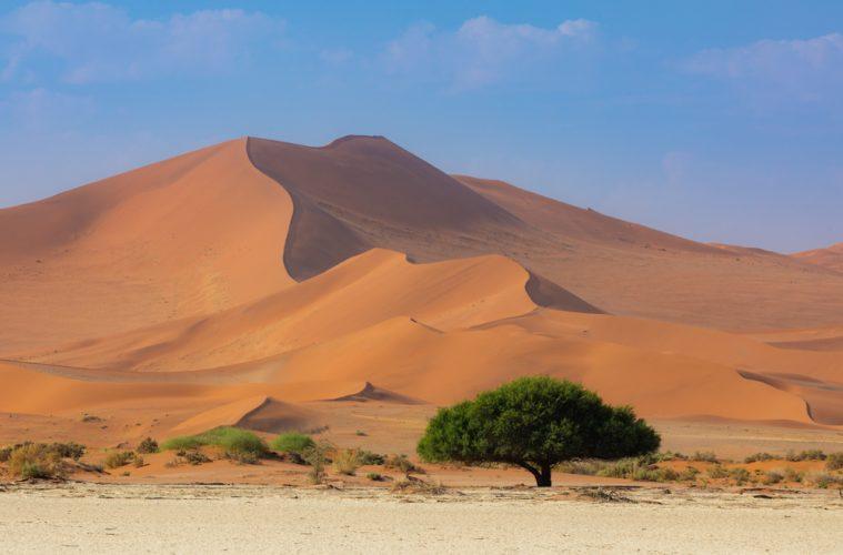 Namibia Photograpahy, deadvlei